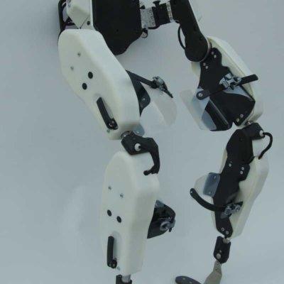 esoscheletro1